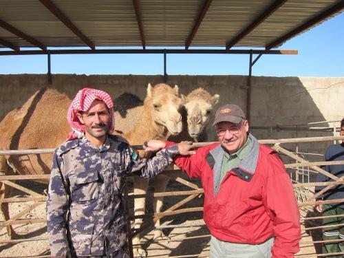 Omar-Syrian-Camels