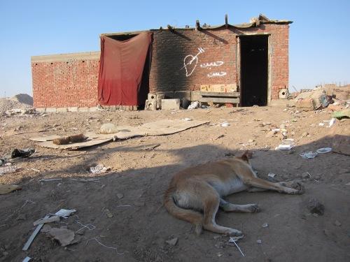 Zariab Slum House