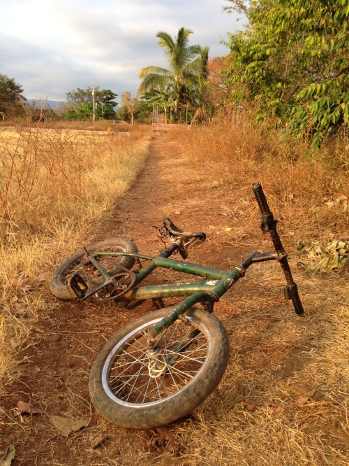 Bike on Trail