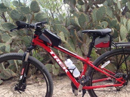 Cactus Bike
