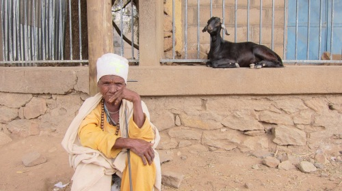 Old woman and goat. | 25 April 2014 | Shire, Ethiopia