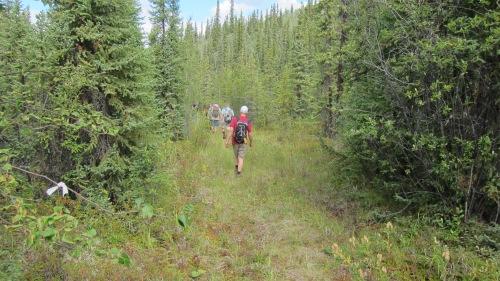 Men Hiking Alaska