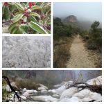 McKittrick Canyon Pics