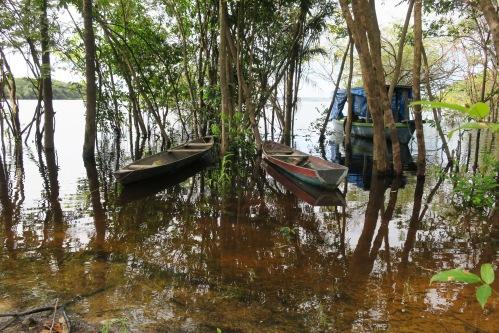 Amazon Boats