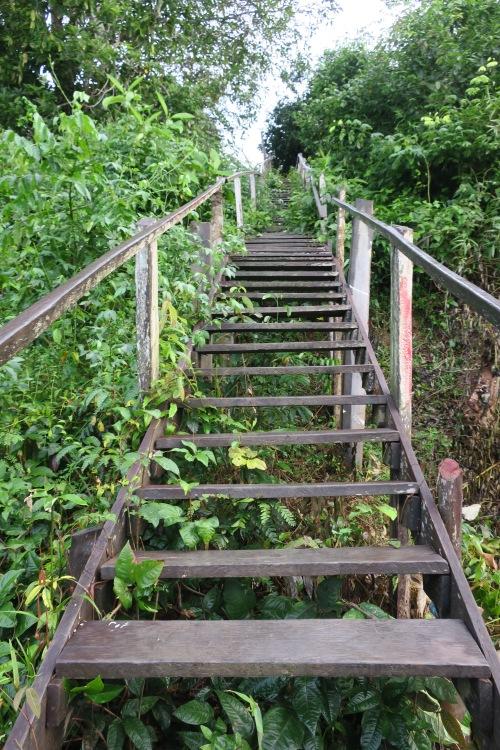 Munduruku Stairway
