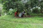 Shade Tree Evangelism