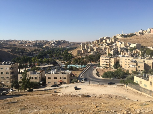 Amman View